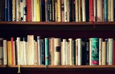 Foto: Ein Bücherregal mit mehreren Buchrücken.