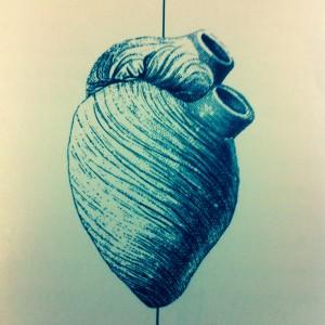 Beispiel einer Zeichnung im Nummermagazin. Zu sehen ist ein gezeichnetes anatomisches Menschenherz.
