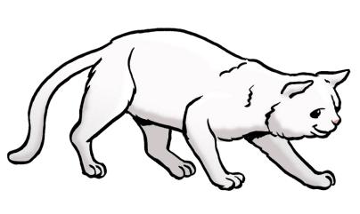 Comic: Eine große weiße Katze läuft von links nach rechts durchs Bild.